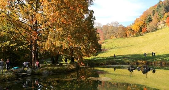 arboretum-vallon-aubonne