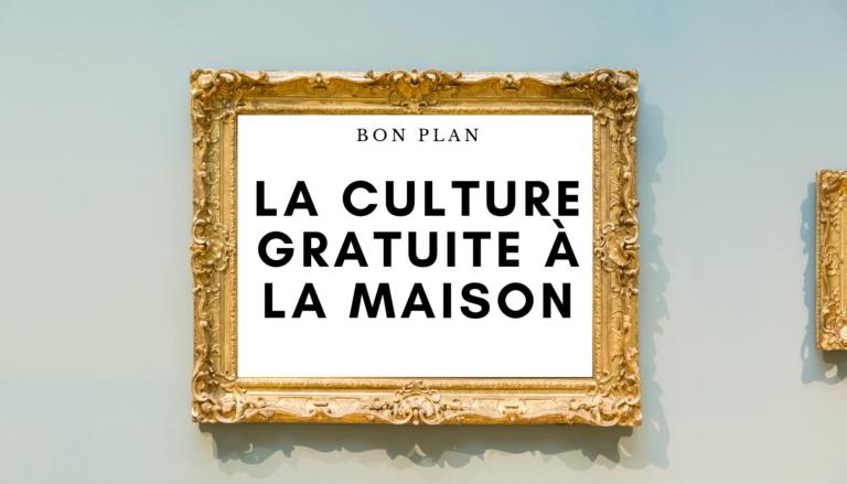 la-culture-grauite-a-la-maison-internet-musee-bibliotheque
